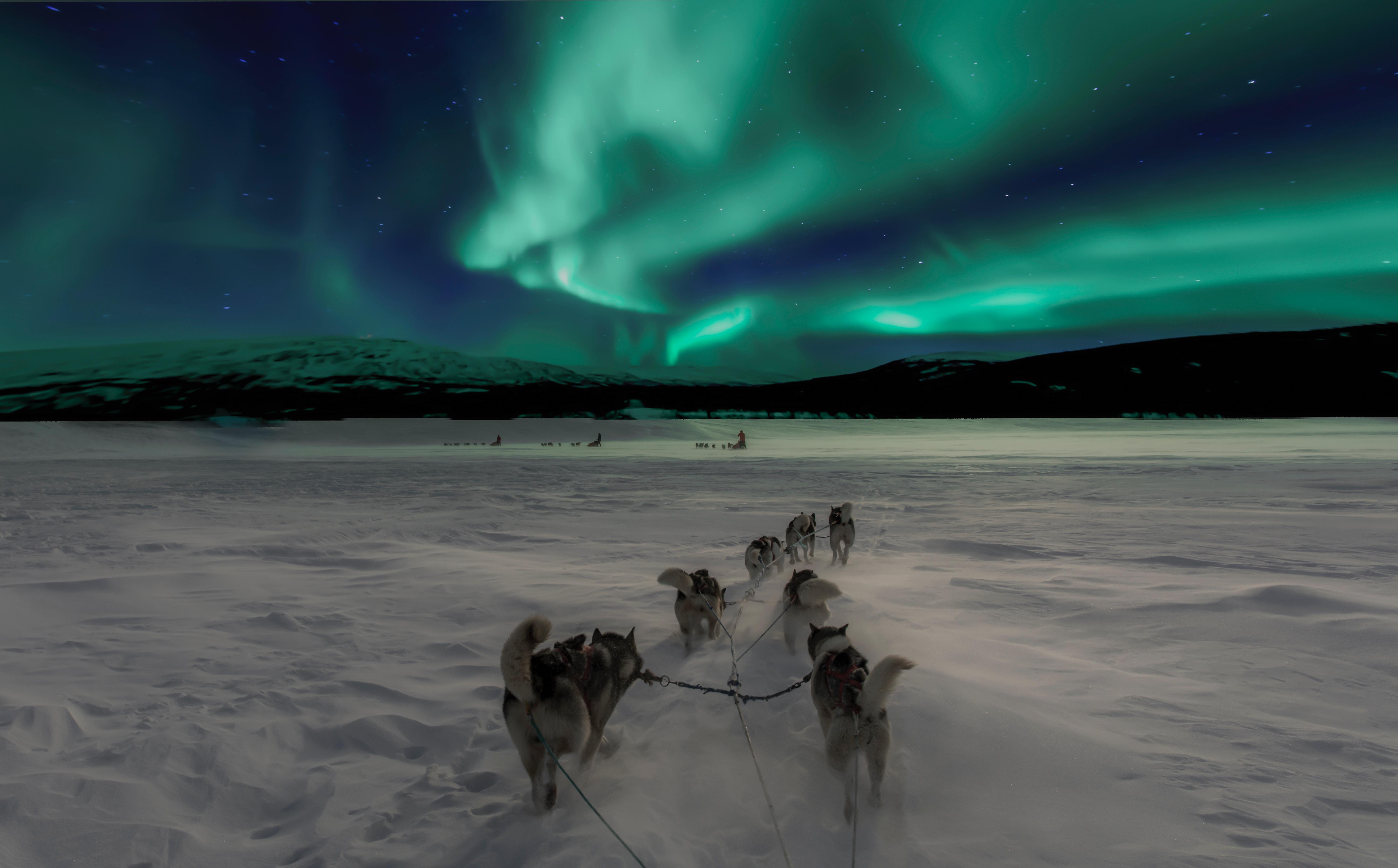 Northern Lights in Norway - perfect adventure honeymoon destination