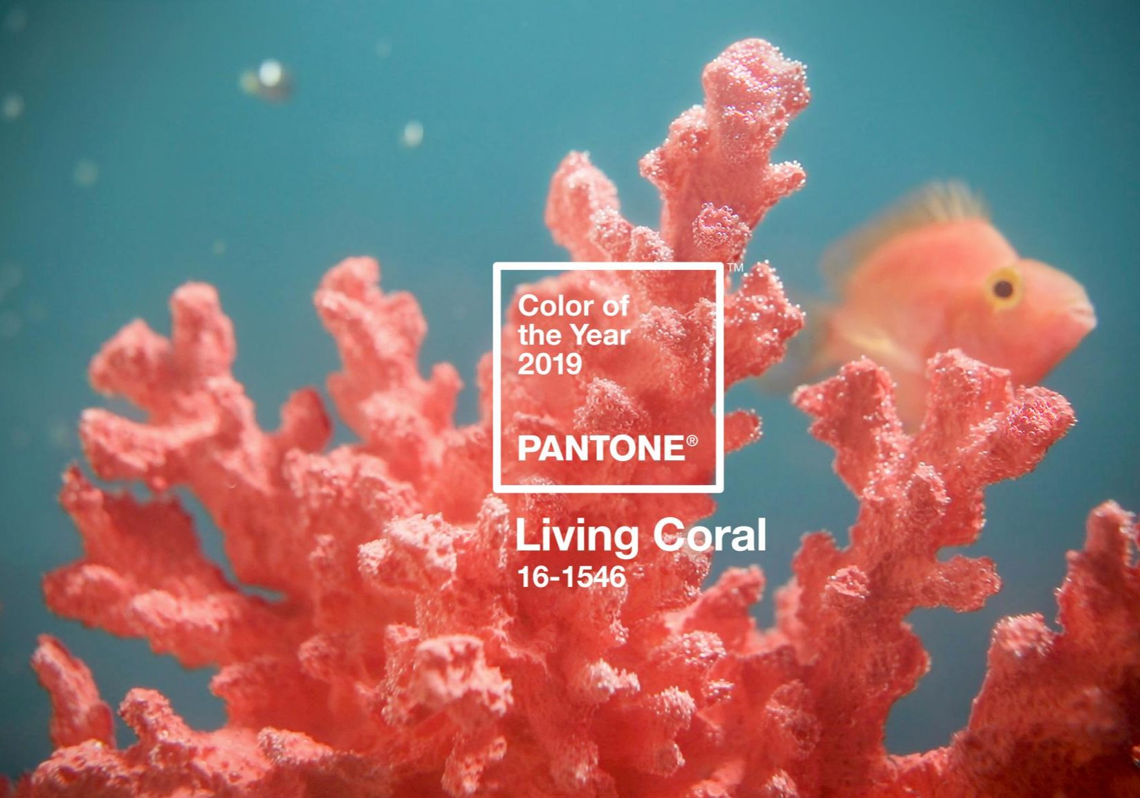 Pantone Colour of the Year - Living Coral - wedding trends